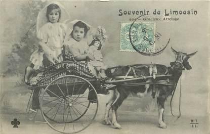 """CPA FRANCE 87 """"Souvenir du Limousin"""""""