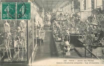 """CPA FRANCE 75005 """"Paris, le Jardin des Plantes"""""""