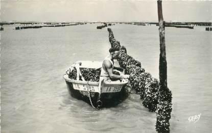 """CPSM FRANCE 85 """"L'Aiguillon sur Mer, travail aux Bouchots"""""""
