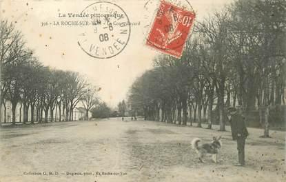 "CPA FRANCE 85 ""La Roche sur Yon, le Cours Bayard"""