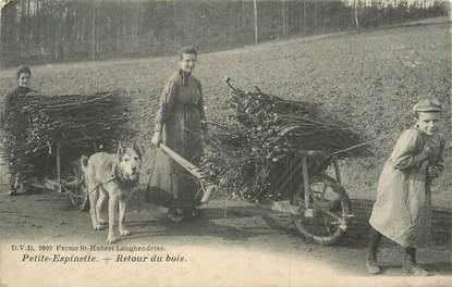 """CPA BELGIQUE """"Petite espinette, le retour du bois"""""""