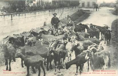 """CPA FRANCE 31 """"Troupeau de chèvres et le chevrier"""""""