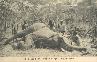 CPA CONGO BELGE / ELEPHANT