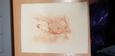 PROGRAMME RÉCITAL ET REPRÉSENTATION MUSIQUE ET DANSE / GRAVEUR STERN PARIS Passage des panoramas IIe / 1909