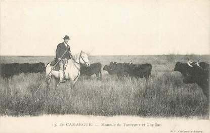 CPA FRANCE 13 / CAMARGUE / TAUREAU