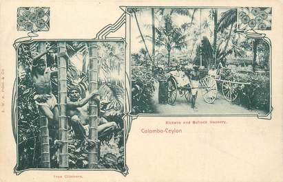 """CPA INDE / CEYLAN """"Colombo"""""""