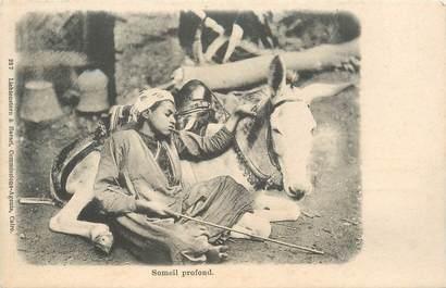 "CPA EGYPTE ""Sommeil profond avec son âne"""