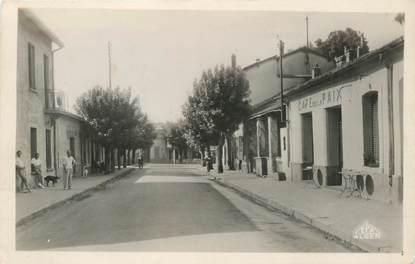 """CPSM TUNISIE """"Ain Draham, rue principale"""""""