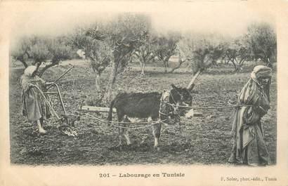 "CPA TUNISIE ""Scène de labourage"""