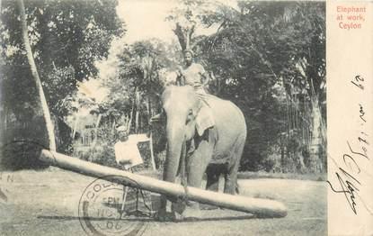 CPA SRI LANKA CEYLAN / ELEPHANT