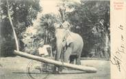Asie CPA SRI LANKA CEYLAN / ELEPHANT