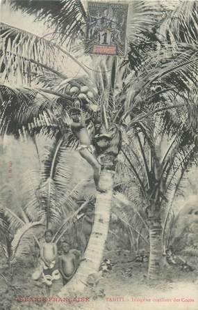 """CPA TAHITI """"Indigène cueillant des Cocos"""""""