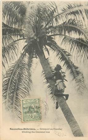 """CPA NOUVELLES HEBRIDES VANUATU """"Indigène grimpant au cocotier"""""""