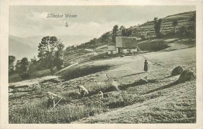 """CPA FRANCE 68 """"Sillacker Wasen"""""""