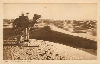 """CPA SCENES ET TYPES / LEHNERT & LANDROCK / TRES BON ETAT """"La Prière au désert, N° 268"""""""