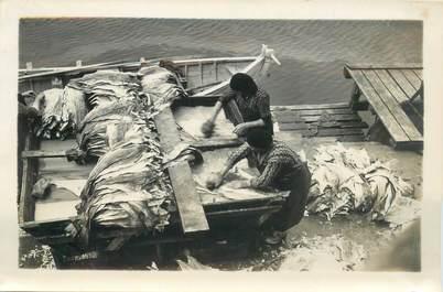 "CARTE PHOTO / PHOTOGRAPHIE ORIGINALE EXPEDITION POLAIRE / ISLANDE REYKJAVIK ""Laveuses de poissons"""