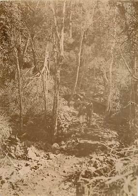 """PHOTOGRAPHIE ORIGINALE / MADAGASCAR """"Chemin dans les gorges d'Antanak"""""""
