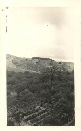 """CPA / PHOTOGRAPHIE ISRAEL """"1960, Vallée de Josaphat"""""""