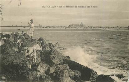 """/ CPA FRANCE 62 """"Calais, la cueillette des moules"""""""