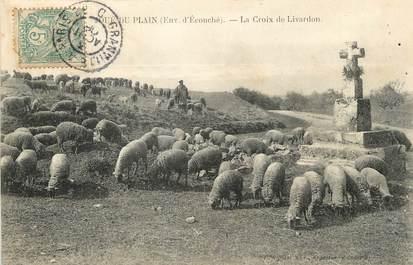 """/ CPA FRANCE 61 """"Joué du Plain, la croix du Livardon"""" / MOUTON / CACHET AMBULANT"""