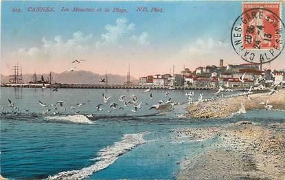 """CPA FRANCE 06 """"Cannes, les mouettes sur la plage"""""""