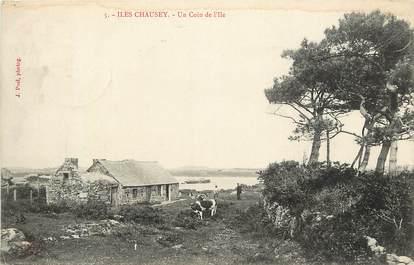 "CPA FRANCE 50 ""Iles Chausey, un coin de l'Ile"""