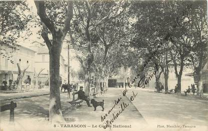 "CPA FRANCE 13 ""Tarascon, le cours national"""