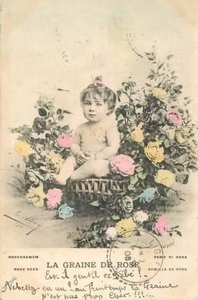 CPA NU  /  ENFANT /  la Graine des Roses