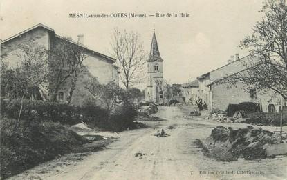 """/ CPA FRANCE 55 """"Mesnil sous les cotes, rue de la Haie"""""""