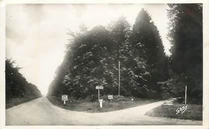 "CPSM FRANCE 14 ""Balleroy, Forêt de Cerisy"""