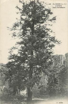 """/ CPA FRANCE 44 """"Clisson, l'arbre des vendéens"""" / ARBRES NOMME"""