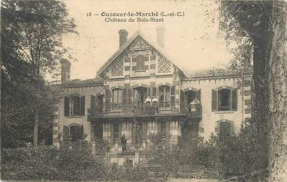 """CPA FRANCE 41 """"Ouzouer le Marché, le Chateau du Bois Riant"""""""