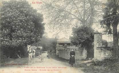 """/ CPA FRANCE 81 """"Forêt de la Grésigne"""" / Ed. Labouche"""""""