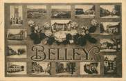 "01 Ain / CPA FRANCE 01 ""Belley"""