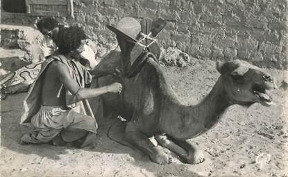 """CPSM MAURITANIE """"Maure sellant son chameau"""""""