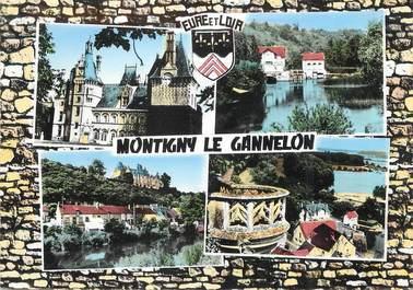 """/ CPSM FRANCE 28 """"Montigny Le Gannelon, le château"""""""