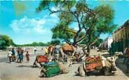 """Asie CPSM  YEMEN """"Aden, marché"""""""