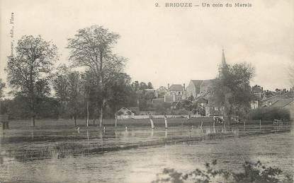 "/ CPA FRANCE 61 ""Briouze, un coin du Marais"""