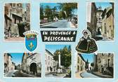 """13 Bouch Du Rhone / CPSM FRANCE 13 """"Pelissanne """""""