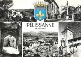 """13 Bouch Du Rhone / CPSM FRANCE 13  """" Pelissanne"""""""